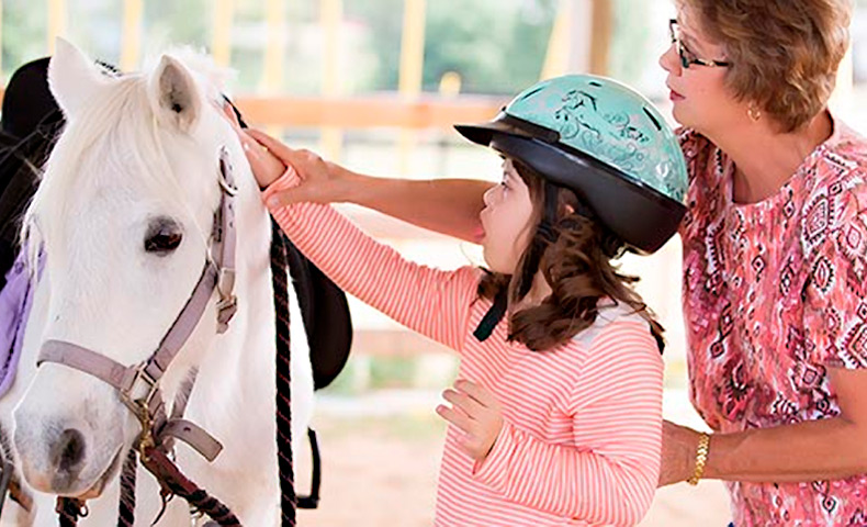 Kingsport Mill Wood Chips Help Local Equestrian Center